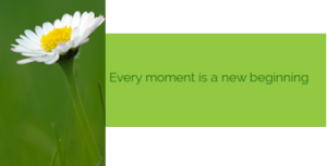 daisy new beginnign