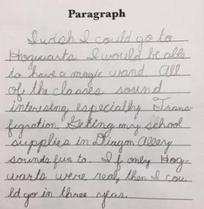 rachel essay 1